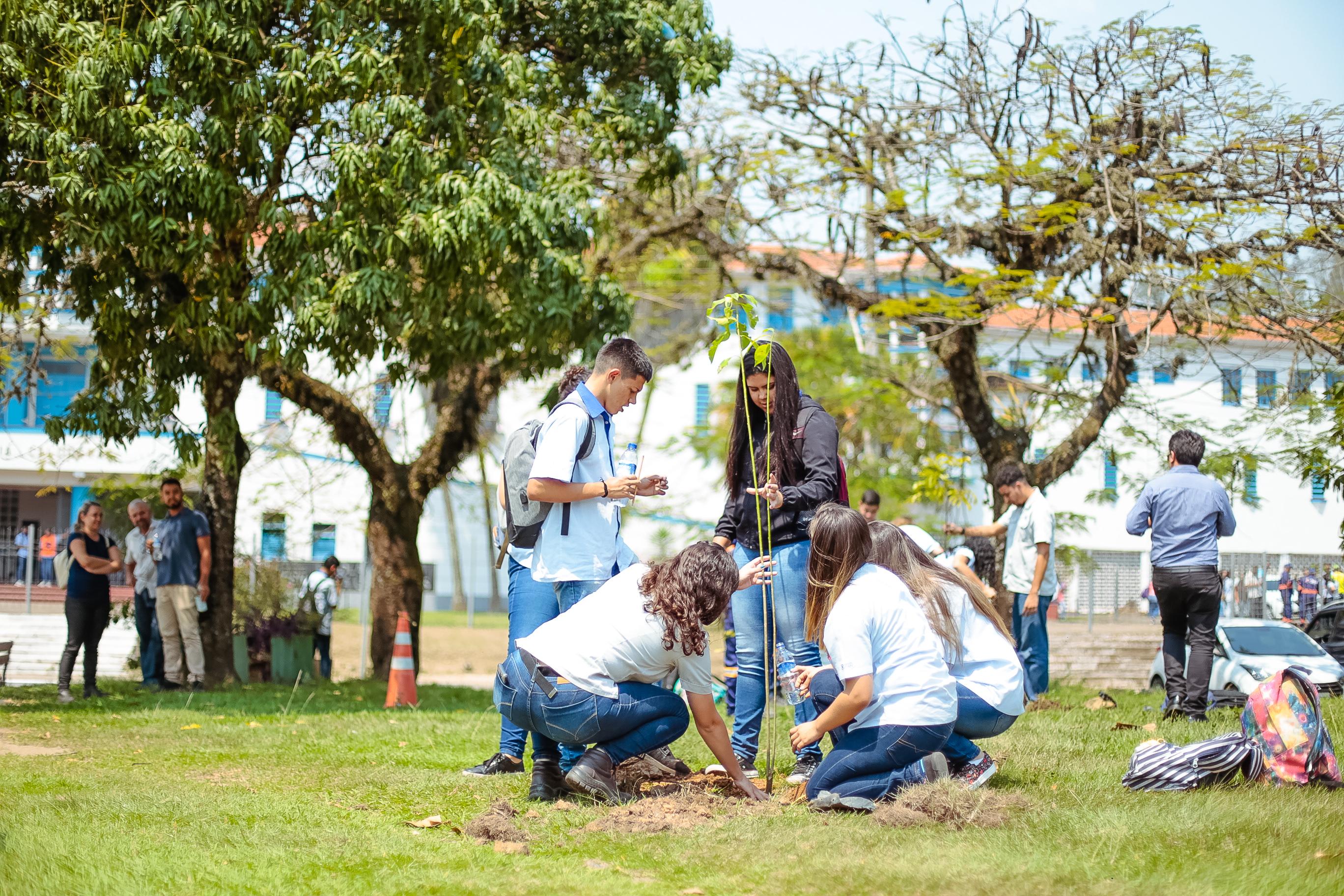CSN celebra Dia da Árvore com evento na ETPC